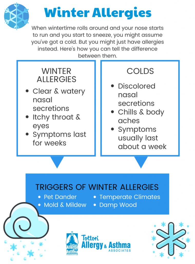 Winter Allergies Colds Tottori Allergy Amp Asthma Associates