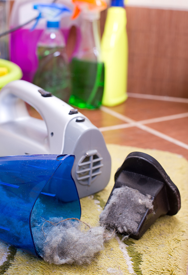 Tottori Allergy & Asthma - Spring Cleaning