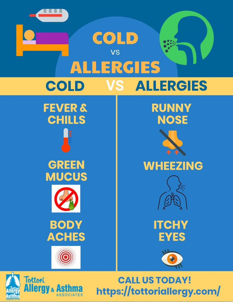 allergy-or-cold
