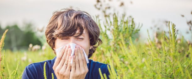 How to Prepare for the Upcoming Allergy Season