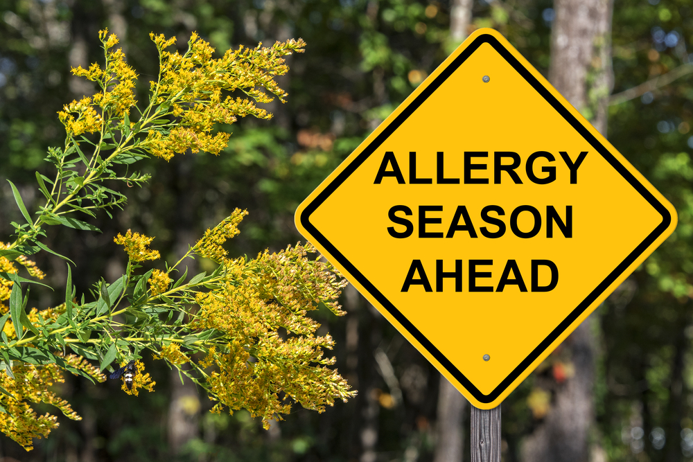 allergy season ahead sign time to find thebest allergy doctor near me