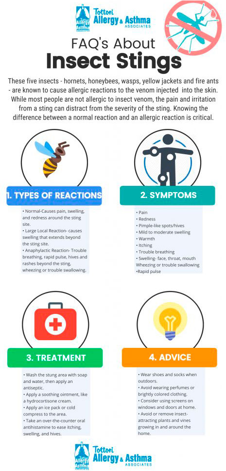 allergy testing infographic about insect stings